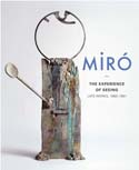 MIRO: The Experience of Seeing